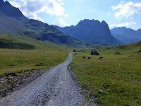 Alp Mora Ofenpass Runde: Bild #18
