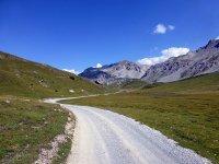 Alp Mora Ofenpass Runde: Bild #21