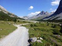 Alp Mora Ofenpass Runde: Bild #26
