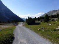 Alp Mora Ofenpass Runde: Bild #27