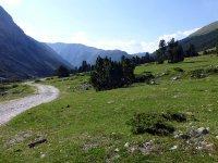 Alp Mora Ofenpass Runde: Bild #31