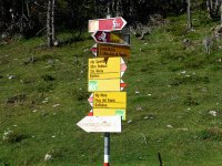 Alp Mora Ofenpass Runde: Bild #33