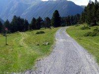 Alp Mora Ofenpass Runde: Bild #34