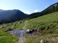 Alp Mora Ofenpass Runde: Bild #37