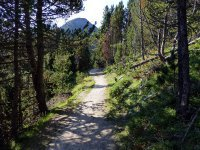 Alp Mora Ofenpass Runde: Bild #38