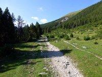 Alp Mora Ofenpass Runde: Bild #39