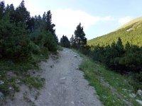 Alp Mora Ofenpass Runde: Bild #41
