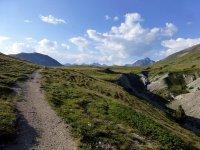 Alp Mora Ofenpass Runde: Bild #45