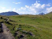 Alp Mora Ofenpass Runde: Bild #46