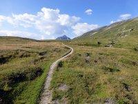 Alp Mora Ofenpass Runde: Bild #47