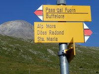 Alp Mora Ofenpass Runde: Bild #51