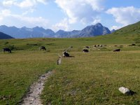 Alp Mora Ofenpass Runde: Bild #52