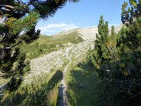 Alp Mora Ofenpass Runde: Bild #57