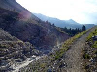 Alp Mora Ofenpass Runde: Bild #59