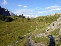 Alp Mora Ofenpass Runde: Bild #60