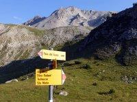 Alp Mora Ofenpass Runde: Bild #61