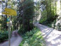 Unterberghorn: Bild #8
