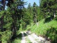 Grammersberg: Bild #32