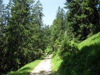 Grammersberg: Bild #39