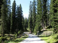 Coburger Hütte: Bild #25