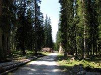 Coburger Hütte: Bild #24