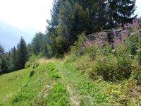 Berninapass Tirano: Bild #29
