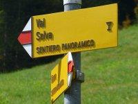 Berninapass Tirano: Bild #30