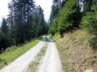 Berninapass Tirano: Bild #33