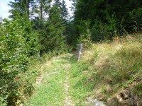 Berninapass Tirano: Bild #46
