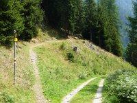 Berninapass Tirano: Bild #52