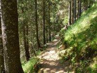 Berninapass Tirano: Bild #54