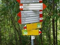Berninapass Tirano: Bild #68