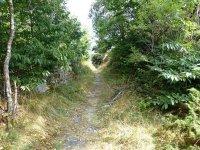 Berninapass Tirano: Bild #72