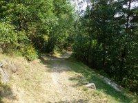 Berninapass Tirano: Bild #76