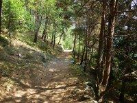 Berninapass Tirano: Bild #77