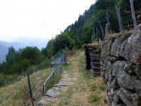 Berninapass Tirano: Bild #81