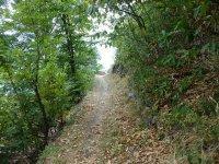 Berninapass Tirano: Bild #82