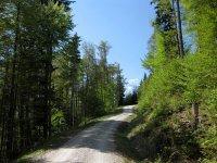 Fahrtkopf: Bild #46