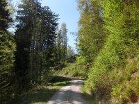 Fahrtkopf: Bild #49