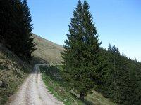 Fahrtkopf: Bild #65
