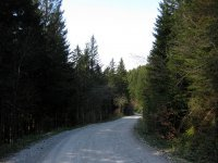 Fahrtkopf: Bild #69