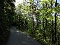 Schönfeldhütte: Bild #9