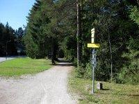 Wangalm und Wettersteinhütte: Bild #6