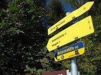 Wangalm und Wettersteinhütte: Bild #10