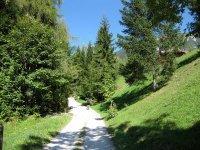 Wangalm und Wettersteinhütte: Bild #12
