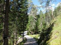 Wangalm und Wettersteinhütte: Bild #15