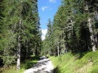 Wangalm und Wettersteinhütte: Bild #17