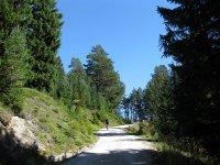 Wangalm und Wettersteinhütte: Bild #18