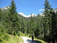 Wangalm und Wettersteinhütte: Bild #19