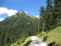 Wangalm und Wettersteinhütte: Bild #20